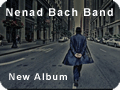 Everything Is Forever - Nenad Bach Band
